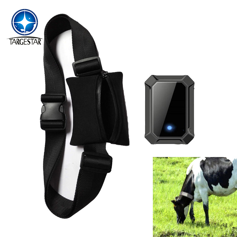 waterproof cow gps tracker for animal