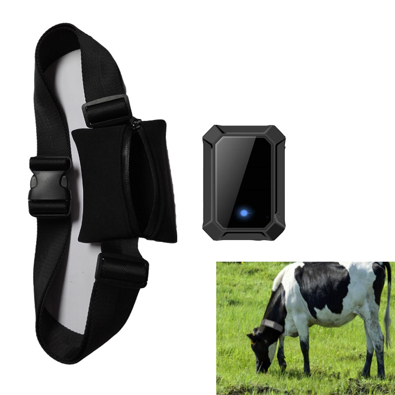 DIY Big Animal GPS Tracker -1.jpg